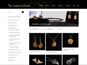 Artifacts and Fossils Jewelry Website - After Image