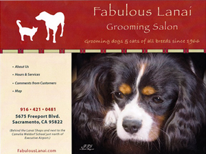 Fabulous Lanai Grooming Salon Website - Before Image